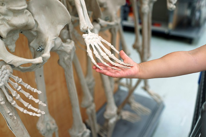 Touching a skeleton's hand at Walmart, CT 2017