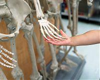 Touching a skeleton's hand at Walmart, CT 2017